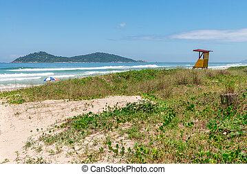 Campeche beach in Florianopolis, Santa Catarina, Brazil -...