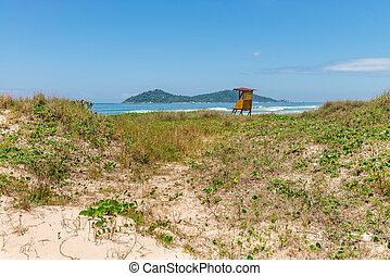 Campeche beach in Florianopolis, Santa Catarina, Brazil. -...