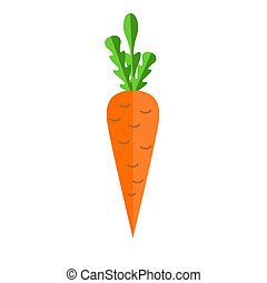 Fresh carrot illustration Carrot for vitamin salad Summer...