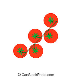 Cherry tomato with leaf arugula vector illustration Top view...
