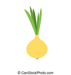 Onion vector illustration. bulb onion on a white background....