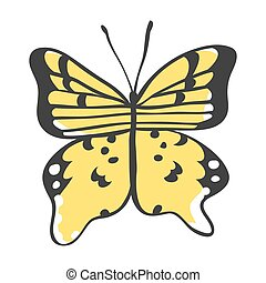 Isolated butterfly. Hand drawn vector illustration....