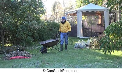 man hand raker rubber boots load barrow autumn leaves garden...