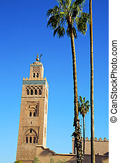 history maroc africa palm - in maroc africa minaret and the...