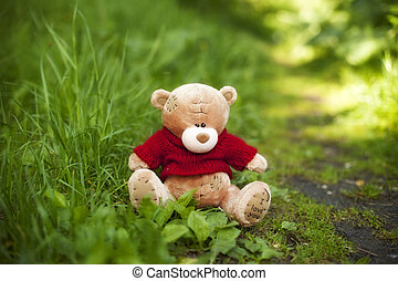 toy Teddy bear sitting in the grass in the summer