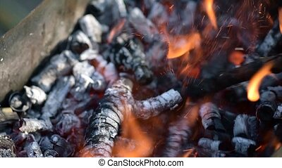 Preparing grill for barbecue - Bright burning wood on fire...