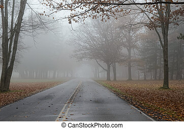 Mysterious Foggy Rd - Foggy Road in Autumn with Car...