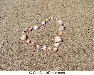 heart shape made of seashells