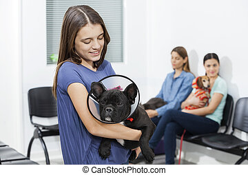 Girl Looking French Bulldog Wearing Cone In Clinic - Smiling...