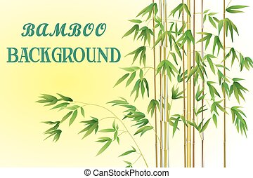 Bamboo Stems with Green Leaves on a Yellow Background....