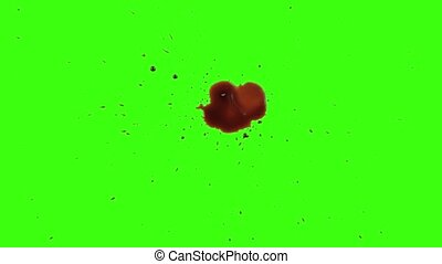 Red Blood Splatter Splash Isolated Green Screen