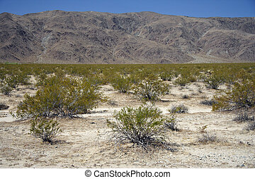 Sierra Nevada - A scenic Sierra Nevada landscape in...