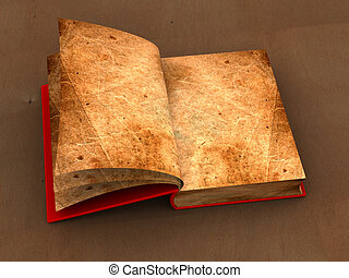 old book - Opened old book
