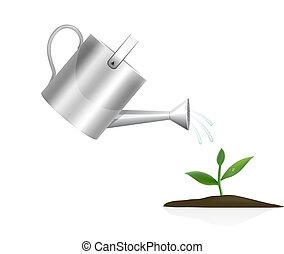 joven, planta, Regar, lata