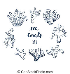 Set of hand drawn underwater coral reef elements. Vector...
