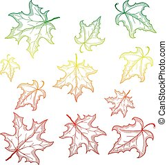 Falling maple leaves. Vector illustration with gradient outlines.