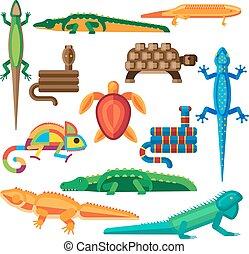 Reptiles vector set - Reptiles and amphibians vector set...