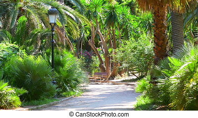 Exotic Park in Barcelona - View of an exotic park in...