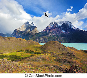Andean condors fly over the lake Pehoe cliffs of Los Kuernos...