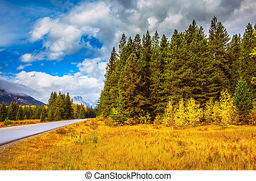 "Highway "" in Banff National Park - ""Golden Autumn"" in Banff..."