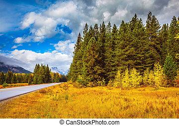 """Highway """" in Banff National Park - """"Golden Autumn"""" in Banff..."""