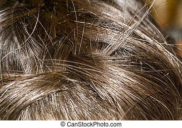 Braided Hair Macro - Braided dark brown hair close up...