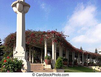 Arquitetura e Flores - Telhado de flores, arquitetura,...