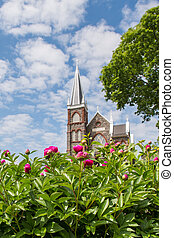 Pink Dahlias Bloom in front of Saint Peters Church vertical...
