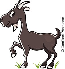 Grey goat illustration - Grey goat vector illustration