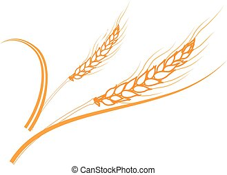 Gold ripe wheat ears frame, border or corner element. -...