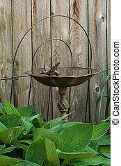 Rusty Iron Bird Bath - Rustic, rusty cast iron bird bath,...