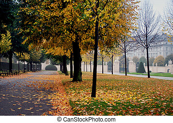 Damp morning in park - Damp morning in autumn city park
