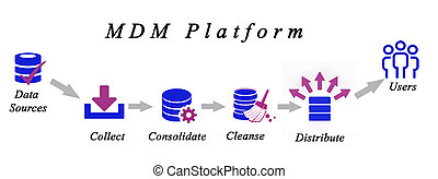 Diagram of Master Data Management