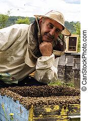 apicultor, en, el, abejera,