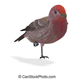 Bird Purple Finch Male 3D rendering with clipping path and...