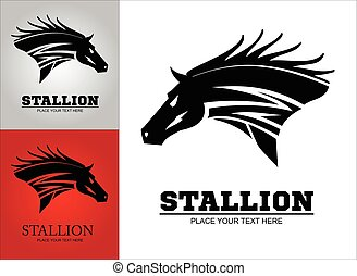 Hairy black wild horse. Great Horse. Horse.