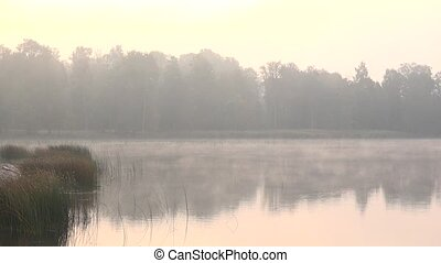 foggy early morning on lake in country region. 4K UHD video...
