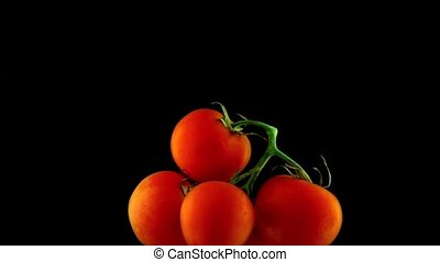 Bunch of red ripe tomatoes floating under water super...