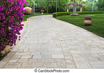 Walkway on garden