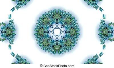 blue butterfly circle pattern and smoke