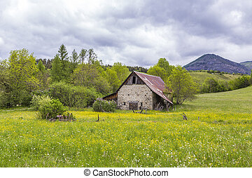 meadow with hut near le Vernet at col Mirabeau - green...