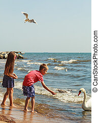 Kids playing with swan white bird. - People and animals....