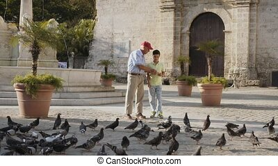 1-Grandpa And Grandson Feeding Pigeons With Bread On...