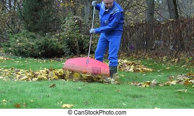 keeper man tidying leaves in garden 4K - keeper man tidying...