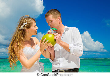 Happy bride and groom drink coconut water and having fun on...