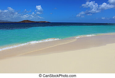 beach in Puerto Rico - white sand beach with blue skies in...
