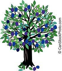 Illustration Plum tree - Vector illustration of a fruit...