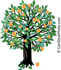 Peach or Orange tree - Vector illustration of a fruit tree....
