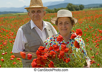 Senior couple picking flowers on a poppy field in early...