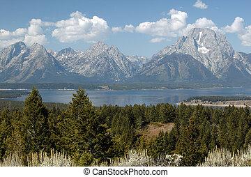 Majesty of Grand Teton